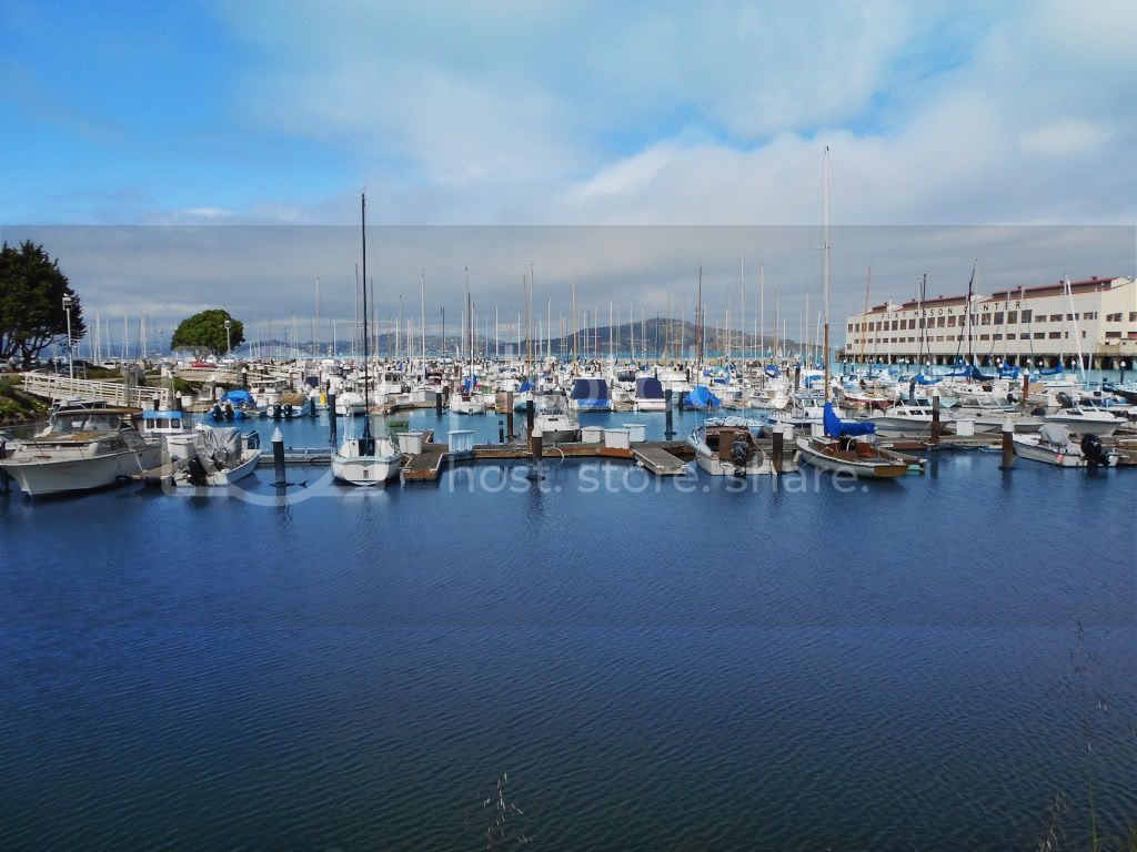 A Walk Around San Francisco Bay